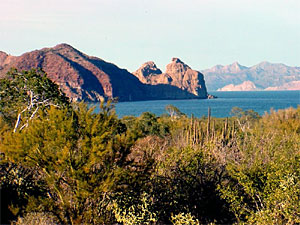 Baja California Yacht Charter